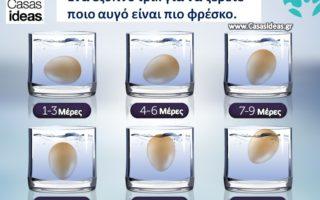 Ποιο αυγό είναι πιο φρέσκο; μυστικά που ΠΡΕΠΕΙ να γνωρίζετε!