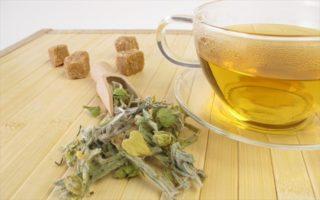 Οι ευεργετικές ιδιότητες που έχει το τσάι του βουνού