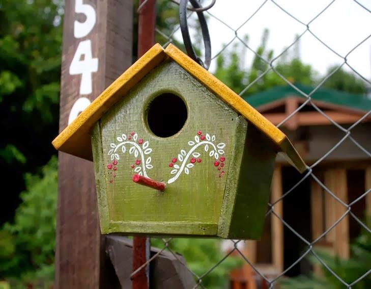 Casa verde y huevo casas ideas - Casa para pajaros ...