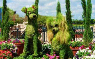 Φυτά σε σχήματα χαρακτήρων Disney