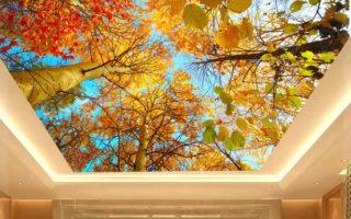 Μερικά από τα πιο δημιουργικά και ασυνήθιστα ταβάνια στον κόσμο